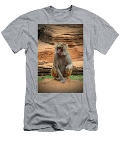 Cercopithecidae Men's T-Shirt (Athletic Fit) featuring the photograph Hamadryas Baboon by Cynthia Guinn