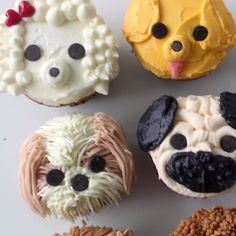 Dog lovers rejoice! There are the cutest cupcakes decorated to look like a pug, pomeranian, golden retriever, labradoodle, poodle and a shih tzu!