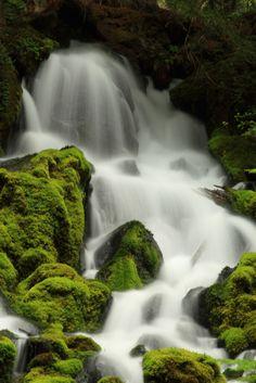 Close-up of Clearwater Falls, Umpqua River, Oregon