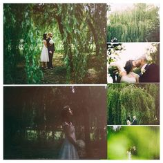Gorgeous photographs of Fiona & Mike who wedded in September under the willow trees at Barberstown castle! Beautiful!  #weddings #Kildare #historiccastlehotel #barberstowncastle #willowtrees