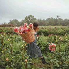 Be One With Nature Spend your weekend with an escape to a flower farm, floral observatory or botanical garden. Wild Flowers, Beautiful Flowers, Purple Flowers, Rain Photo, No Rain, Jolie Photo, Dancing In The Rain, My Flower, Farm Life