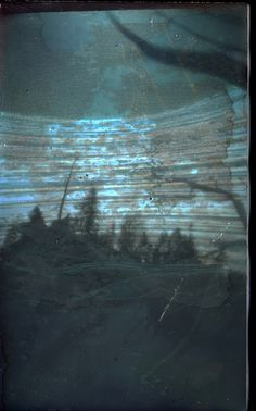 Solar forest by peterpinhole, via Flickr
