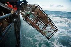 Deadliest Catch - I call them carts.  I make up new names for the things I don't know the names of.