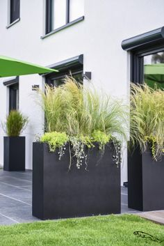 Planters as a privacy screen on the terrace - garden design ideas - Planters as a privacy screen on the terrace With our ELEMENTO planter you can create an excellent p - Back Gardens, Small Gardens, Outdoor Planters, Outdoor Gardens, Garden Planters, Modern Planters, Modern Patio, Backyard Patio, Backyard Landscaping