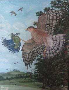 (c) Hawk by Marwan Kishek - Oil on canvas Oil On Canvas, Pets, Painting, Animals, Animaux, Painting Art, Animal, Paintings, Animales