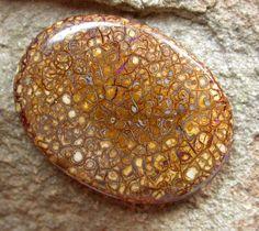 Boulder Opal 37 x 28 x 7mm 49 carats Auction #298321 Opal Auctions