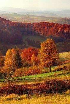 Golden Autumn in POLAND.