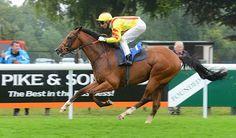 Winning Horse Tips: 2:20 Windsor Racing Tips (5th Sept) OAKLEY COURT M...