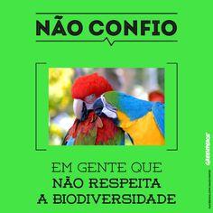 O desmatamento está colocando a biodiversidade em risco de extinção. Salve a Amazônia: http://www.chegademadeirailegal.org.br/ pic.twitter.com/xJWAKFABJn