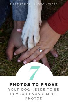 7 Photos to Prove Your Dog Needs to be in Engagement Photos - Tiffany Noel Engagement Pictures, Engagement Shoots, Wedding Pictures, Lovers Pics, Dog Lovers, Photos With Dog, Pet Memorial Gifts, Wedding Photography Tips, Wedding Memorial