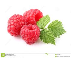 ripe-raspberry-leaf-white-background-30978897.jpg (1300×1061)