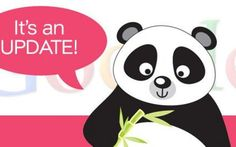 Google panda update ed i contenuti di scarsa qualità #google #seo #serp #panda