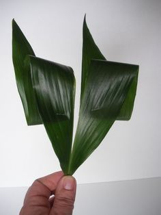 montage floral en triangle - Recherche Google