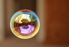 Image result for bubble reflection