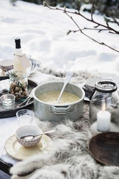 ♔ Picnic in the snow! These are sometimes called Russian Winter Picnics. Use a nice warm blanket as a tablecloth, have food in thick, oven-proof crockery and let it be warming. Don't drink alcohol, but do eat warming foods! Winter Bbq, Winter Garden, Winter Time, Winter Cabin, Cozy Winter, Winter Food, Snow Cabin, Texas Winter, Norway Winter