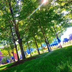 #PrettyPicMonday: Campus Green (@maiddai13)