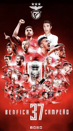 Benfica Wallpaper, First Love, Soccer, Movie Posters, Movies, Wallpapers, Club, Futbol, Wall