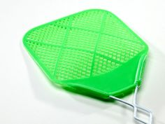 brain boosters fly swatter