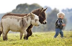 #funny #kids #baby #babies #cute