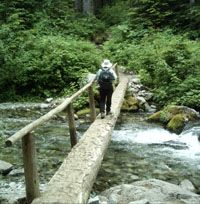A hiker crosses a log bridge over Cataract Creek, on the Wonderland Trail near the Carbon River Campground.