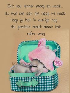 Goeie Nag, Afrikaans Quotes, Morning Pictures, Morning Pics, Good Night Quotes, Special Quotes, Sleep Tight, Lunch Box, Sweet Dreams
