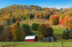Photos of Fall in the Southeast: Shades of Autumn Red in North Carolina
