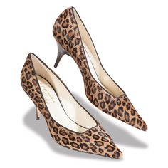 A kitten heel animal print? Yes, please! And Thank you JCrew ...