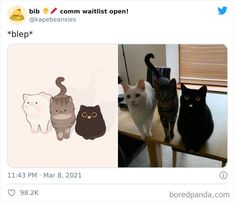 Cute Little Animals, Cute Funny Animals, Funny Cute, Cute Cats, Cute Animal Drawings, Cute Drawings, Funny Animal Pictures, Cute Pictures, Chibi