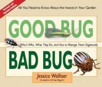 how to kill squash bugs