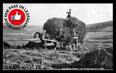 New page on Legendary Dartmoor - The Fern Harvest.