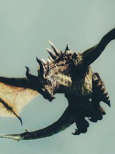 Dragon Pinterest: us_nilep