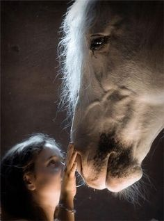 Horse Love....