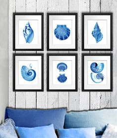 Seashell Art Blue Seashell Prints set of 6 by GnosisPictureArchive