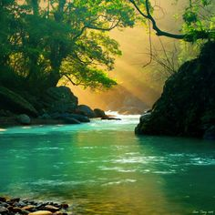 sunlight on the river