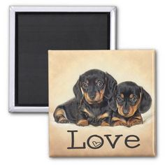 I Love This Selection Of Dachshund Magnets Like The One Shown Here Other Include