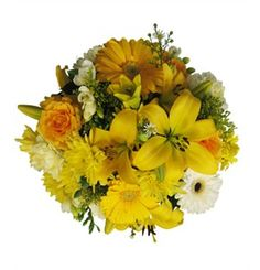 Summer Sunshine  A Yellow and White bouquet of mixed seasonal blooms wrapped in cello. Picture shown is medium in size.
