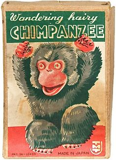 Wandering Hairy Cnimpanzee