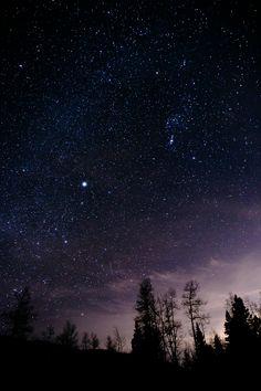 High quality images of the sky. Night Sky Stars, Sky Full Of Stars, Starry Night Sky, Star Sky, Night Skies, Sky At Night, Night Sky Wallpaper, Wallpaper Space, Dark Wallpaper