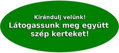 házikerti uborkatermesztés - Kertlap Kertészeti Magazin & Kertészeti Tanfolyamok Chart, Turmeric