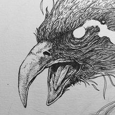 ENDEAVOR SECRET BIRD on Behance