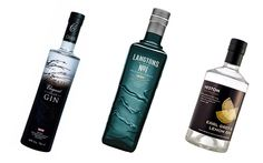 A round-up of the best gin newcomers.