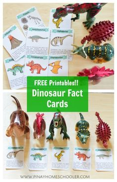 FREE Dinosaur fact cards and ten frames Dinosaur Facts For Kids, Dinosaur Theme Preschool, Dinosaur Printables, Dinosaur Cards, Dinosaur Activities, Preschool Activities, Vocabulary Activities, Dinosaur Projects, Dinosaur Dinosaur