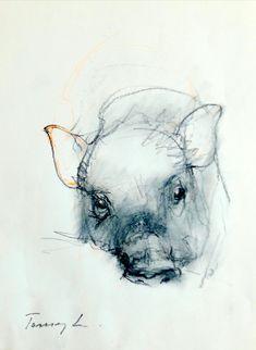 29 x 23 cm drawings, ske Animal Sketches, Animal Drawings, Pencil Drawings, Animals For Kids, Baby Animals, Cute Animals, Pastel Pencils, Animal Wallpaper, Animal Design