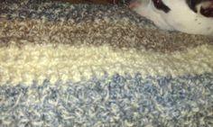 Blanket in process