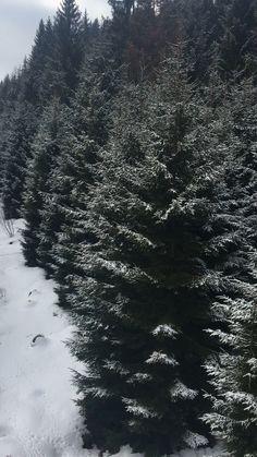 Winter in România