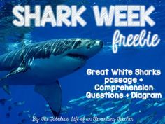 FREE Non-fiction reading for Shark Week!