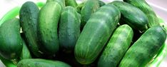 How to grow delicious cucumbers!