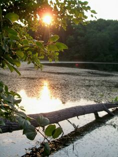 Scout Lake Park in Greendale, a Milwaukee suburb. Greendale, WI. (Richard S. Buse photo)
