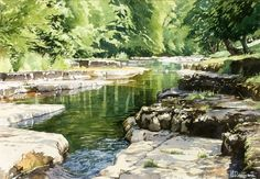 Brian Robinson.The River Cover, N Yorks. Watercolor