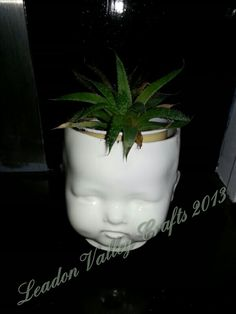 Ceramic dolls head planter. Www.Facebook.com/leadonvalley